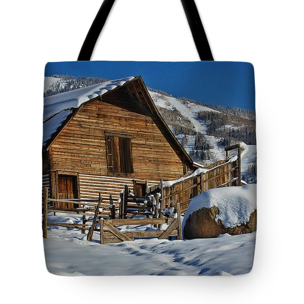 Tote Bag featuring the photograph Steamboat Barn by Don Schwartz