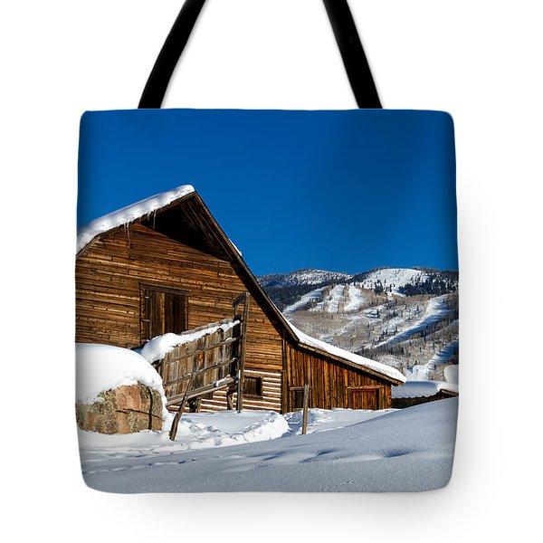 Steamboat Springs Colorado Tote Bag by Teri Virbickis