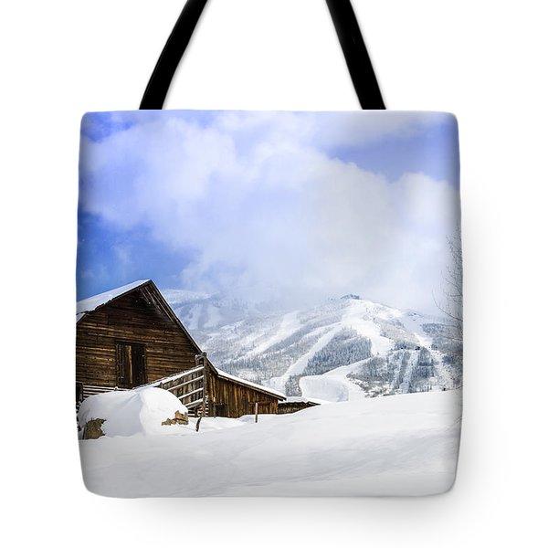 Steamboat Springs Tote Bag by Teri Virbickis