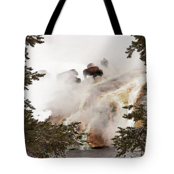 Steamy Bison Tote Bag