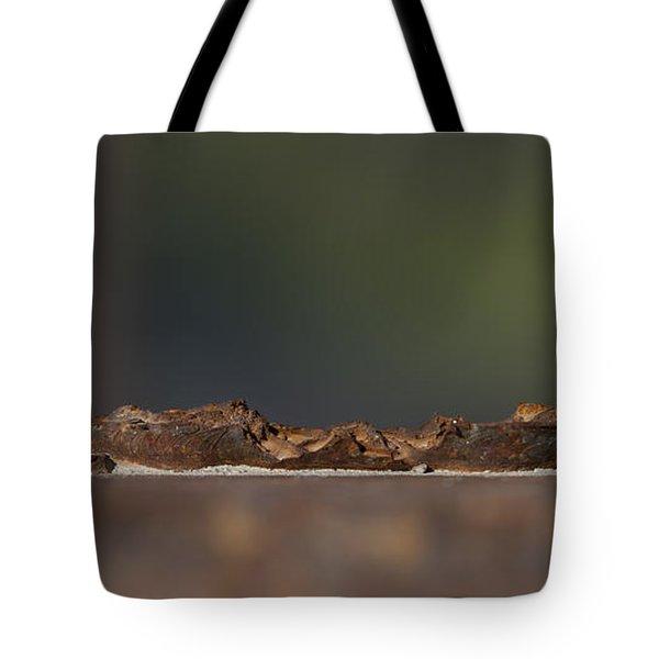 Steel Landscape Tote Bag