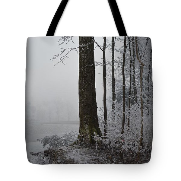 Steep And Frost Tote Bag by Felicia Tica