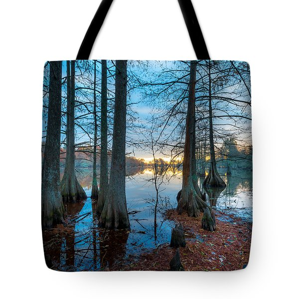 Steinhagen Reservoir Vertical Tote Bag