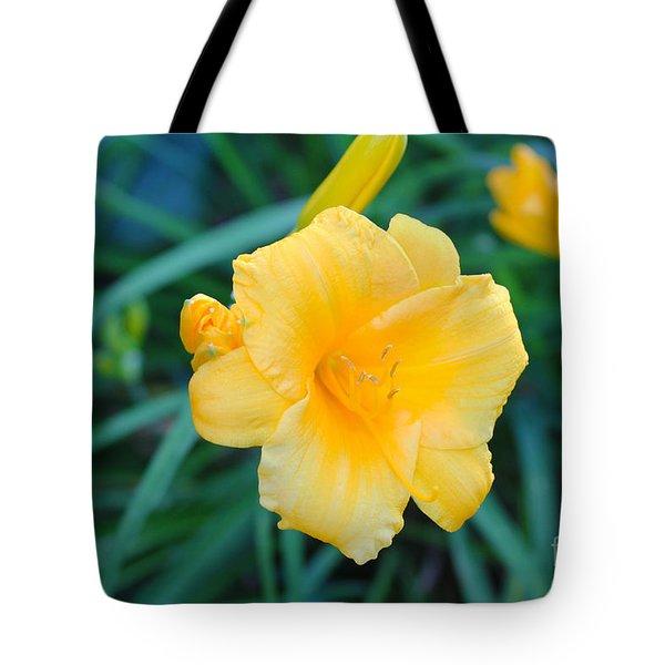 Stella De Oro Daylily Tote Bag