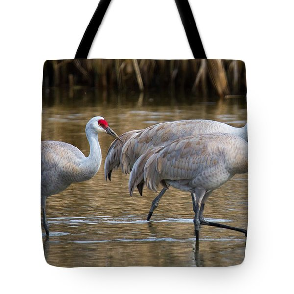 Steppin Out Tote Bag by Randy Hall