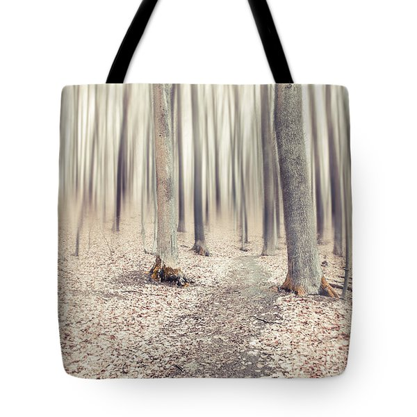 Steppin' Through The Last Days Of Autumn Tote Bag by Hannes Cmarits