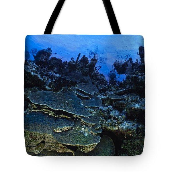 Steps Of The Sea Tote Bag