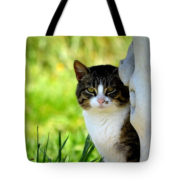 Still Tote Bag by Deena Stoddard