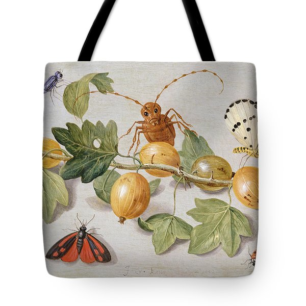 Still Life Of Branch Of Gooseberries Tote Bag