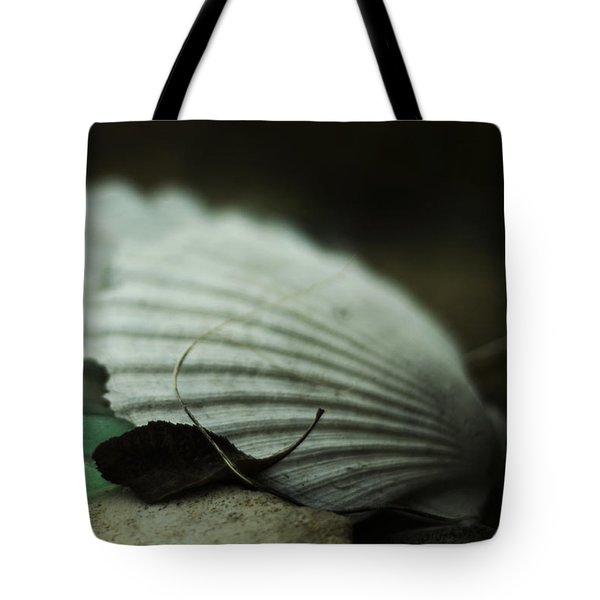 Still Life With Fossil Shells And Beach Glass Tote Bag