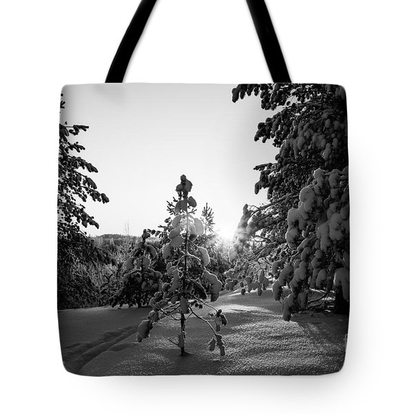 Still Standing In The Winter Sunset Bw Tote Bag