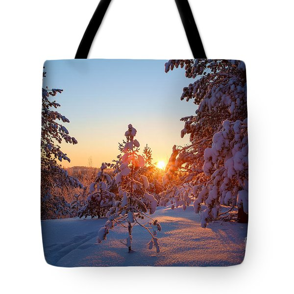 Still Standing In The Winter Sunset Tote Bag