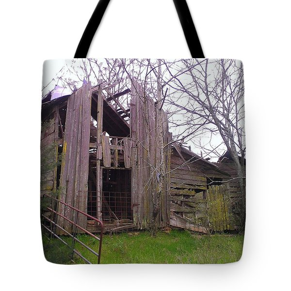Tote Bag featuring the photograph Still Standing by Lew Davis