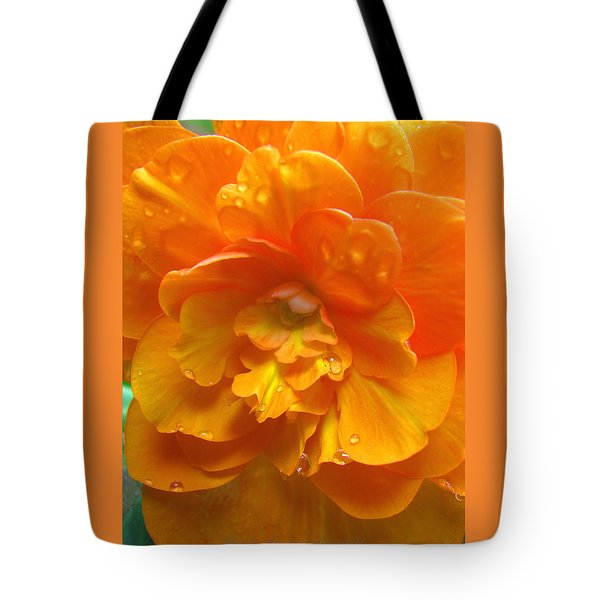 Tote Bag featuring the photograph Still The One - Images From The Garden by Brooks Garten Hauschild