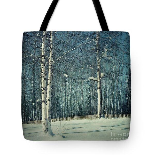 Still Winter Tote Bag by Priska Wettstein