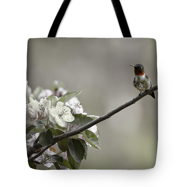 Stilllife Tote Bag