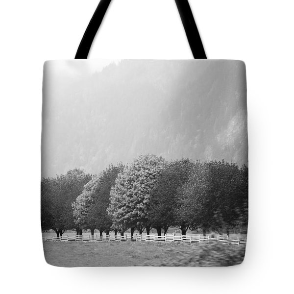 Tote Bag featuring the photograph Stillness And Motion by Sandi Mikuse