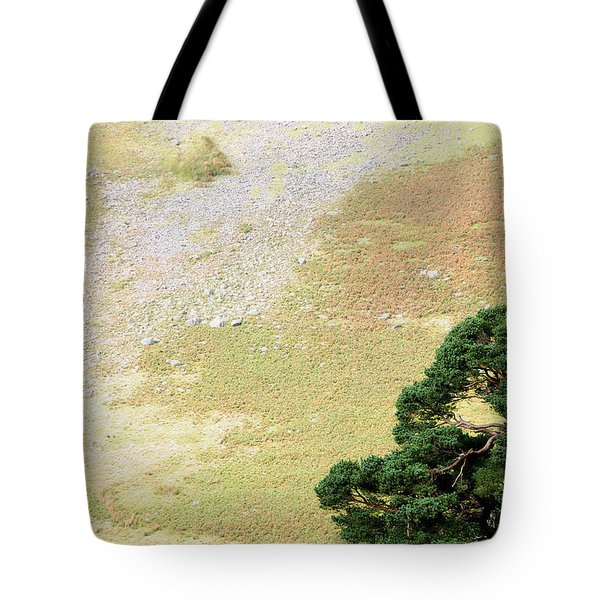 Stillness. Wicklow Mountains. Ireland Tote Bag by Jenny Rainbow