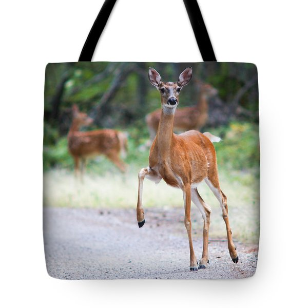 Stomp Tote Bag by Aaron Aldrich