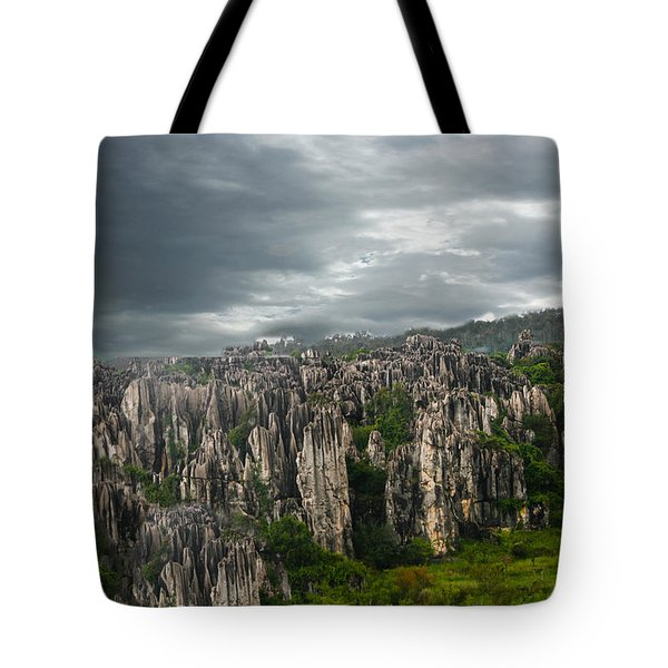 Tote Bag featuring the photograph Stone Forest by Robert Hebert