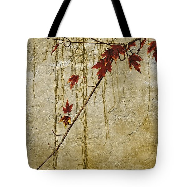 Stone Walled Tote Bag by Andrea Kollo