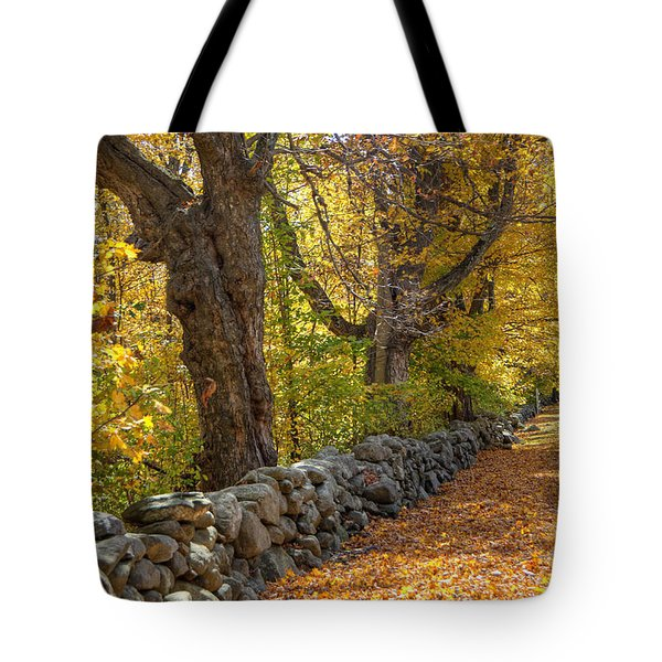 Stonewall In Autumn Tote Bag by Donna Doherty