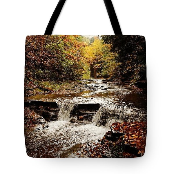 Stony Brook Gorge Tote Bag by Justin Connor
