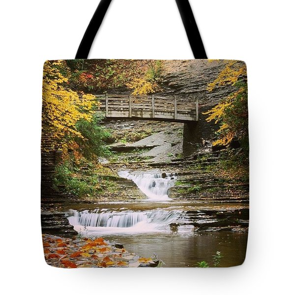 Stony Brook Tote Bag