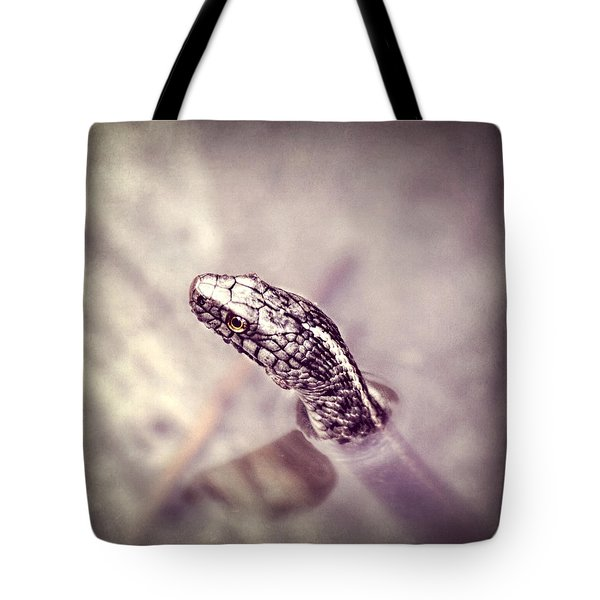 Tote Bag featuring the photograph Stony Stare by Melanie Lankford Photography