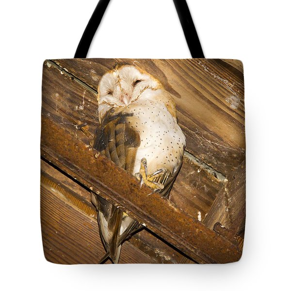 Stop Bothering Me Tote Bag by Jean Noren