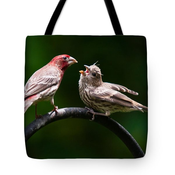 Stop Playing Dad. Give It To Me Tote Bag by Robert L Jackson