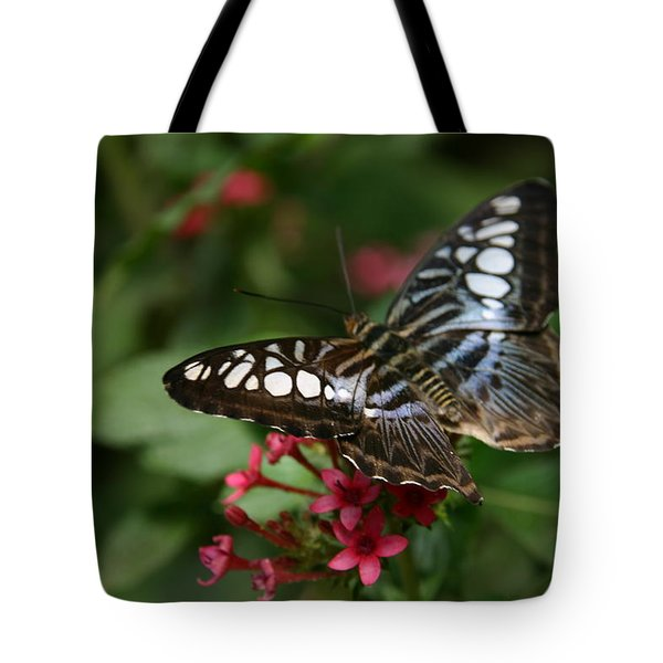 Tote Bag featuring the photograph Stopping By by Denyse Duhaime