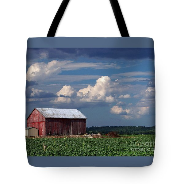 Tote Bag featuring the photograph Storm Above by Gena Weiser