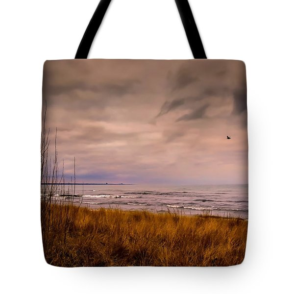 Storm Approaching At Dusk Tote Bag