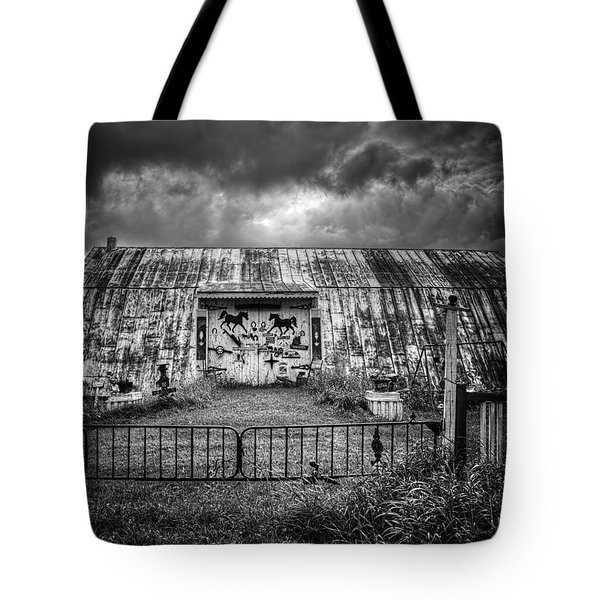 Storm Coming In On The Farm Tote Bag by Thomas Young