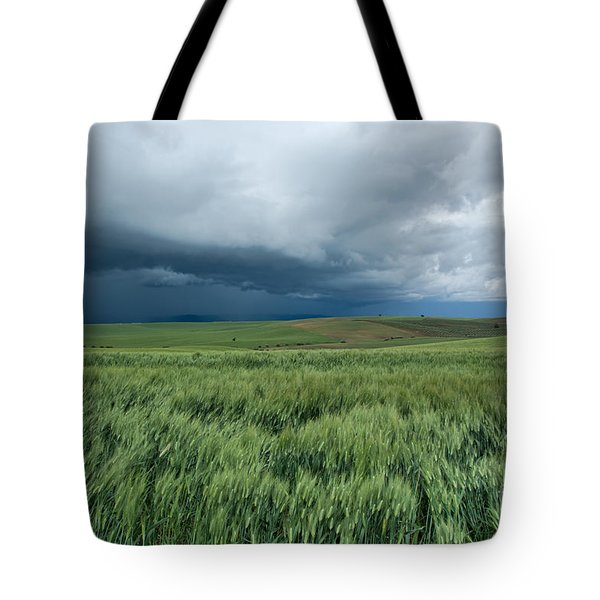 Storm Is Coming Tote Bag by Simona Ghidini