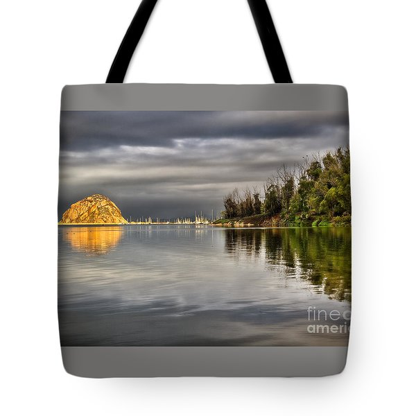 Storm Light Tote Bag by Alice Cahill