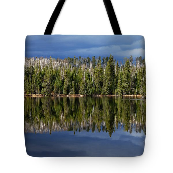 Storm Reflections Tote Bag by Larry Ricker