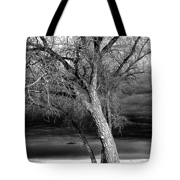 Storm Tree Tote Bag by Steven Reed