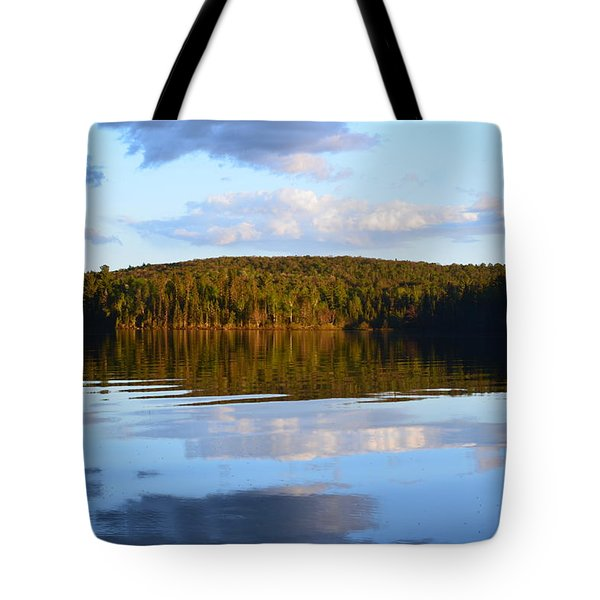Stormclouds Scatter Tote Bag