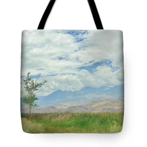 Tote Bag featuring the photograph Stormin by Marilyn Diaz