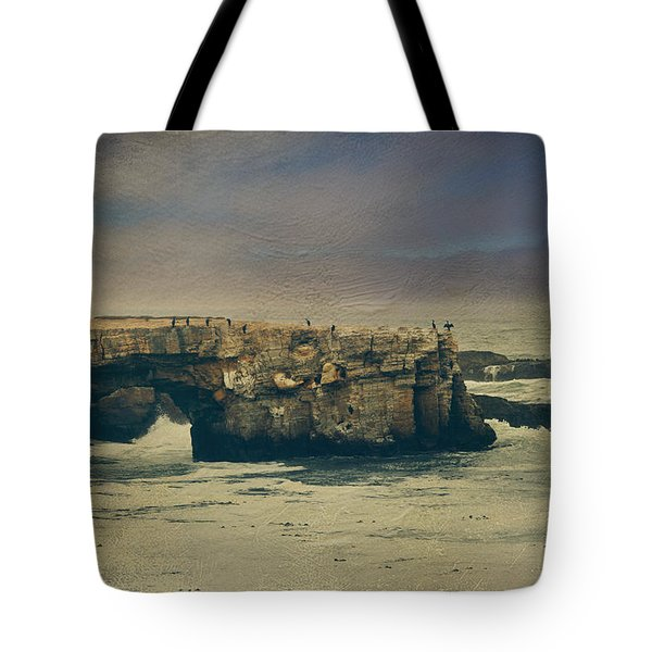 Storms Always Pass Tote Bag by Laurie Search