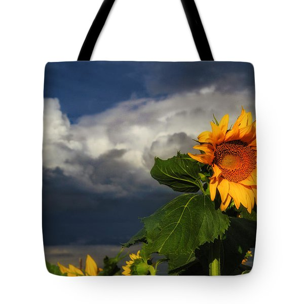 Stormy Sunflower Tote Bag