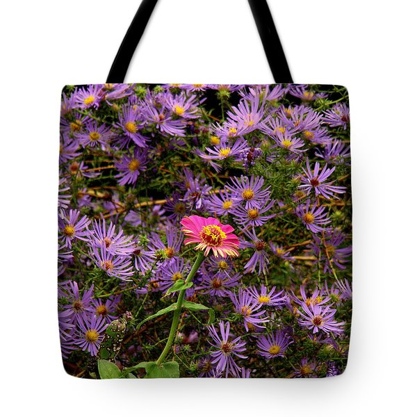 Stranger In A Strange Land Tote Bag