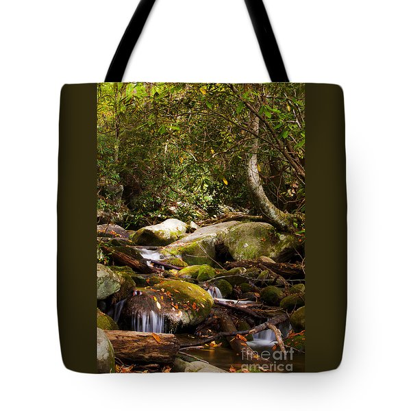 Stream At Roaring Fork Tote Bag by Lena Auxier