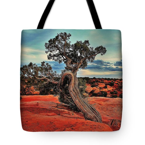 Strength Tote Bag by Benjamin Yeager