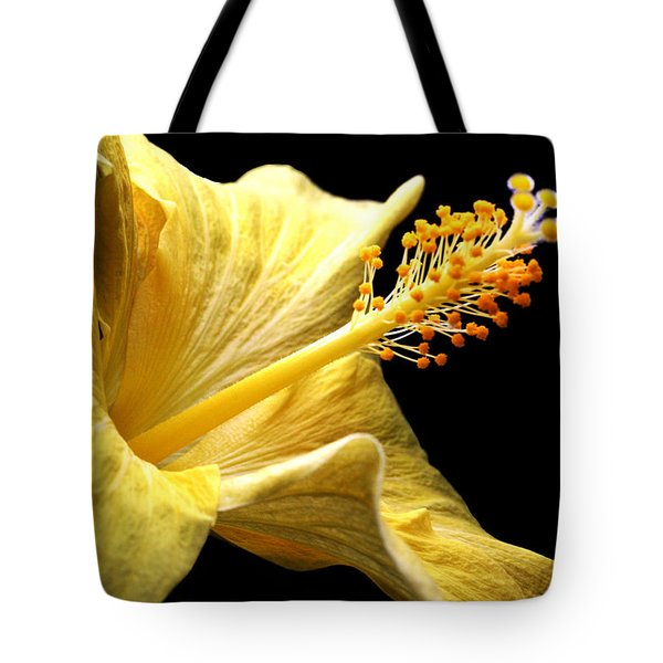 Stretcher Tote Bag by Doug Norkum