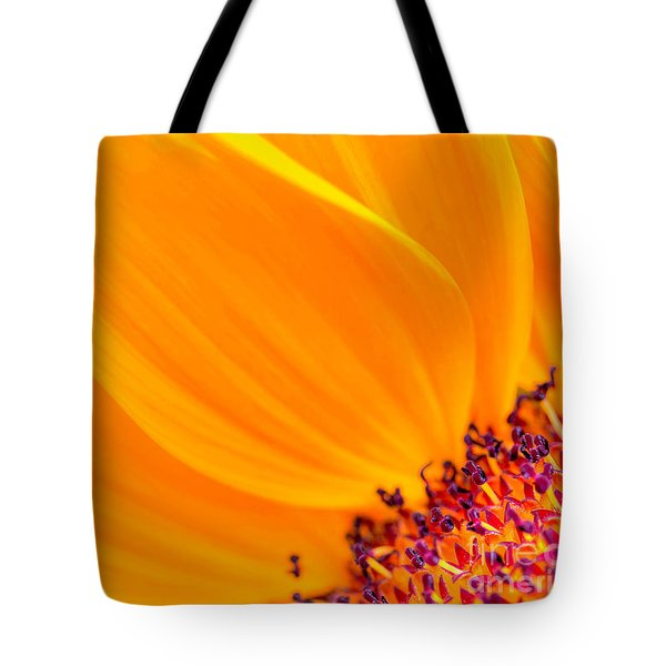 Stretching Out Tote Bag by Jim Carrell