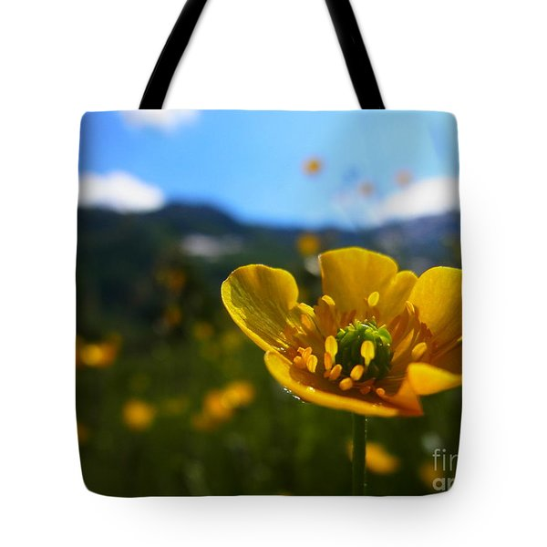 Stretching Towards The Sun Tote Bag