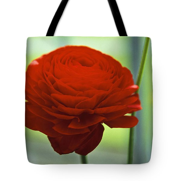 Striking Red Tote Bag by Lana Enderle
